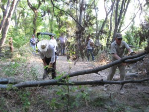 Volunteers clear trail of downed tree limbs - August 2009