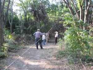 TTPA Volunteers walk in the woods