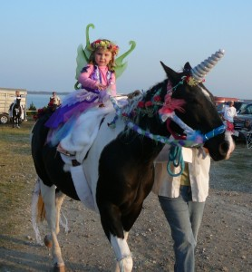 Unicorn and Fairy Princess Costume